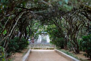 An Hien Garden House Hue- Best Hue Citty Tour Travel