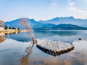 Hoi An To Hue Private Car- Best Hue City Tour Travel