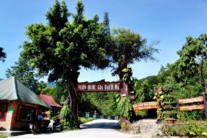 Hue to Bach Ma National Park- Best Hue City Tour Travel
