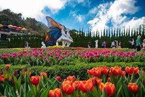 Ba Na Hills Tour from Hoi An- Best Hue City Tour Travel