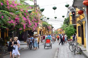 Da Nang to Hoi An Tour Full Day- Best Hue City Tour Travel